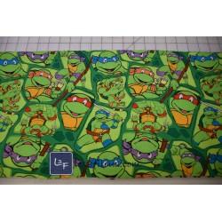 Ninja Turtle-2 TIS-054