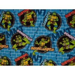 Ninja Turtle TIS-162